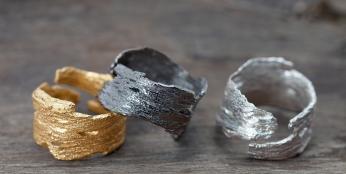 Bark Rings (2)
