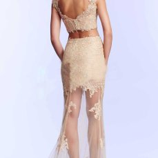 Fabulous-Floor-length-Lace-Sheath-Prom-Dresses-3877-1